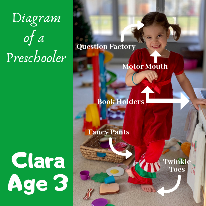 Diagram of a Preschooler